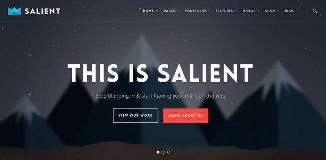 01-Salient-800x394