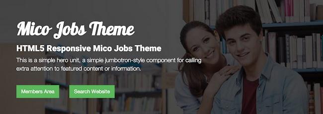 01-micro-job-theme-800x284-