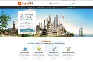 02-InsuranceThemes