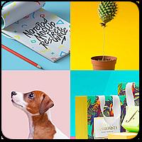 10 новых многоцелевых тем оформления WordPress за июль 2017