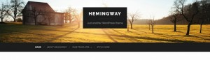 11-hemingway