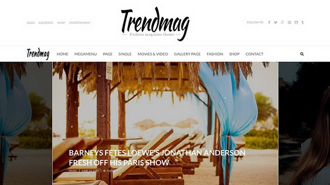 12-trendmag-wordpress-theme
