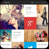 15 тем оформления для сайтов социальных сетей на BuddyPress