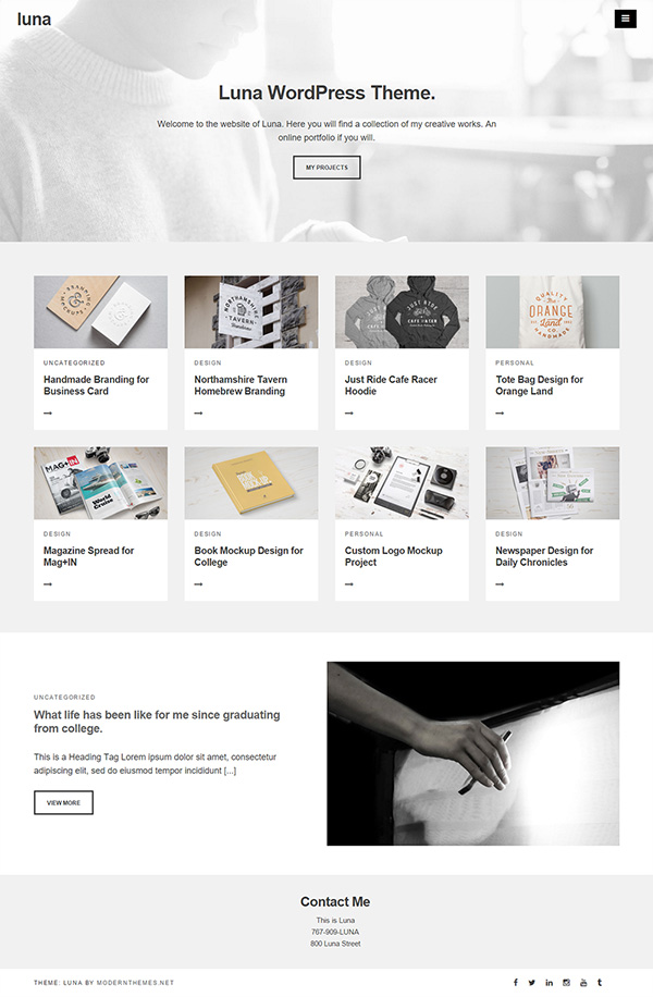 16-wordpress-themes-luna-modernthemes
