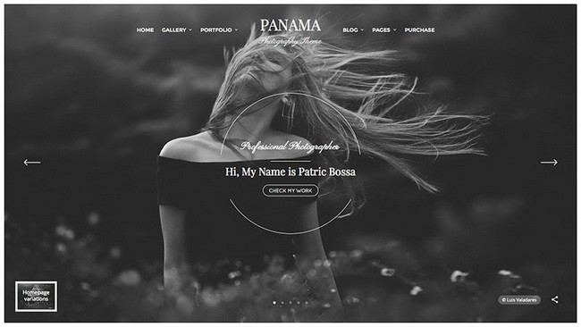 17-panama-wordpress-theme