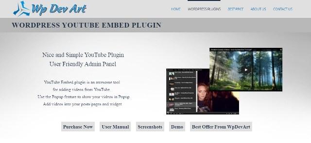 WordPress YouTube plaginlari
