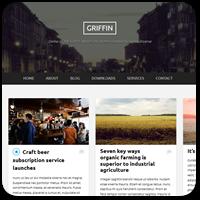 20 бесплатных адаптивных тем WordPress для онлайн-журнала или блога