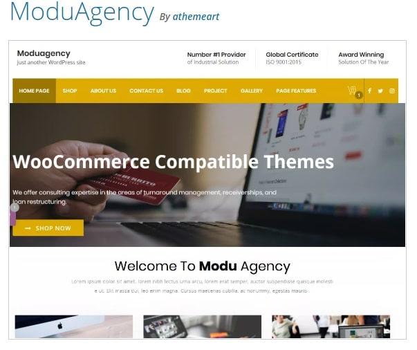 Moduagency - это многопользовательская тема WordPress