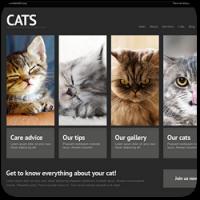 27 тем WordPress для сайта о животных и домашних питомцах