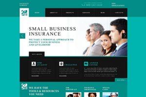 31-InsuranceThemes