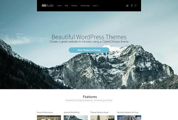 45 тем WordPress для лендингов и целевых страниц на 2017 год