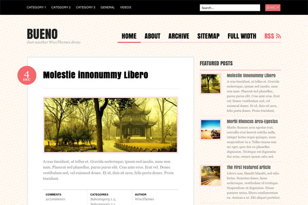 bueno premium wordpress theme