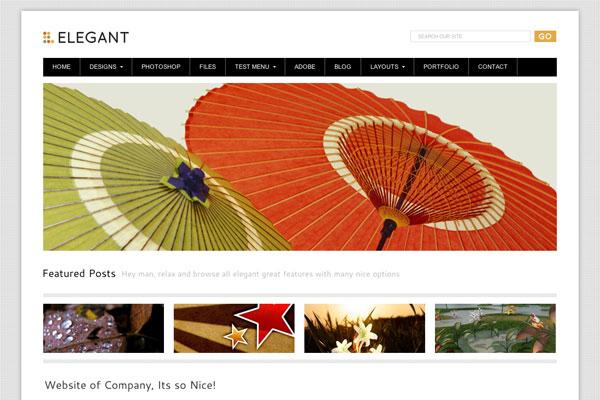 elegant premium wordpress theme