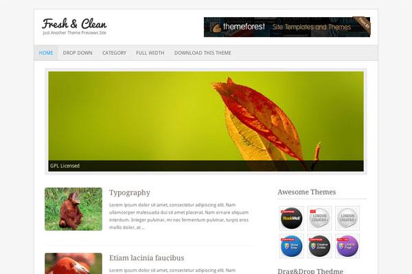 fresh clean premium wordpress theme