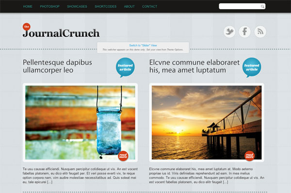 journal crunch premium wordpress theme