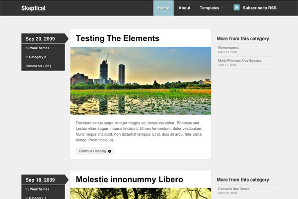 skeptical premium wordpress theme