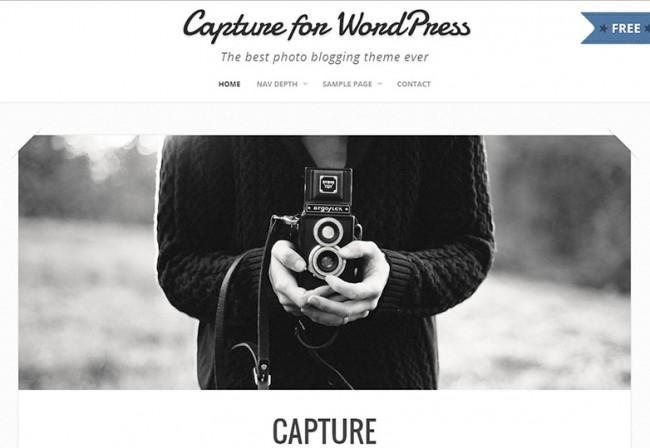 Capture10 650x448 26 лучших бесплатных WordPress тем в апреле 2014