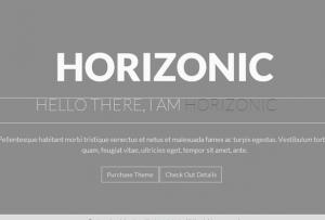 HORIZONIC