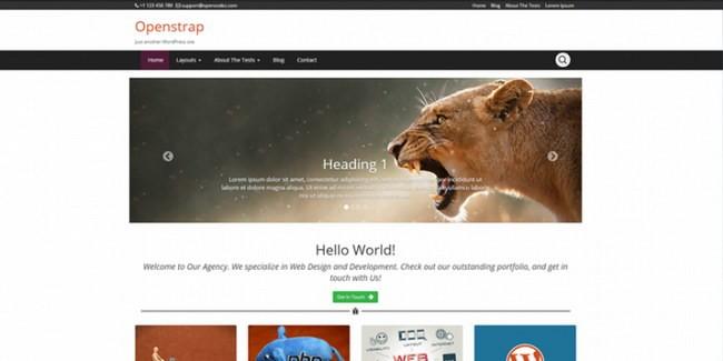 Openstrap-theme-e1421919011476