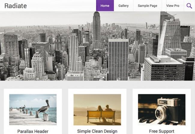 Radiate 650x448 26 лучших бесплатных WordPress тем в апреле 2014