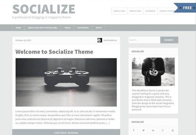 Socialize Lite 650x448 26 лучшиx бeсплaтныx WordPress тeм в aпрeлe 2014
