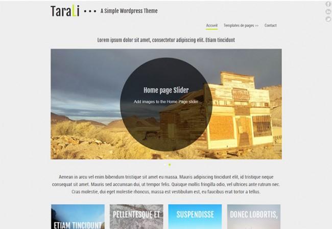 TaraLi 650x448 26 лучших бесплатных WordPress тем в апреле 2014