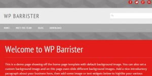 WP Barrister