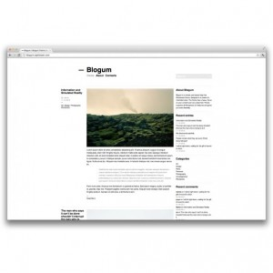 blogum-600x415