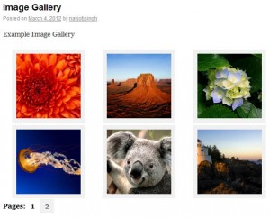 cleaner_gallery_pagination