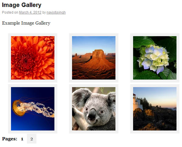cleaner gallery pagination Как разбить WordPress галерею на несколько страниц