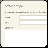 Убираем поле для ввода веб-сайта из формы комментариев WordPress