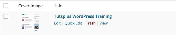 Создаем портфолио с помощью WordPress плагина Projects от WooThemes