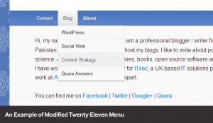 example-wp-menu