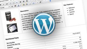 WordPress Layout