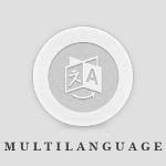 multilanguage-wordpress-plugin-overview