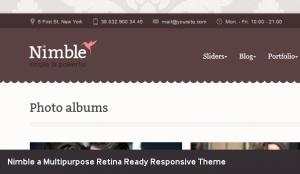 nimble-retina-theme