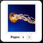Как разбить WordPress галерею на несколько страниц