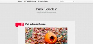 pink-touch-2-800x383