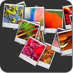 7 плагинов для фотогалереи на WordPress