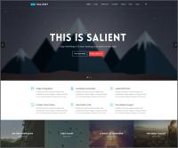 Salient — творческая многоцелевая тема WordPress с более 35,000 загрузок