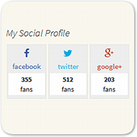 Создаем виджет соцсетей для WordPress, чтоб узнать количество фолловеров — Часть 2