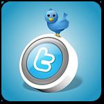 Как создать простой плагин Twitter для WordPress