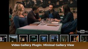 video-gallery-plugin1