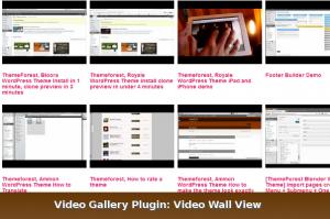 video-gallery-plugin2