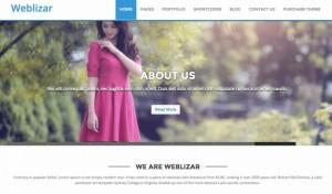 weblizar-800x470