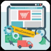6 лучших вариантов отчетов и аналитики для вашего магазина WooCommerce