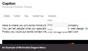 wordpress-menus-example3