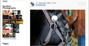 wp-plugin-yet-another-photoblog