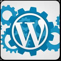 Как можно быстро ускорить загрузку сайта на WordPress