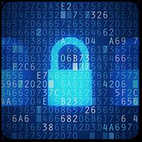 Что делать, есть ваш WordPress-сайт взломали хакеры